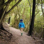 A boy walks through forest at Ashley Gorge