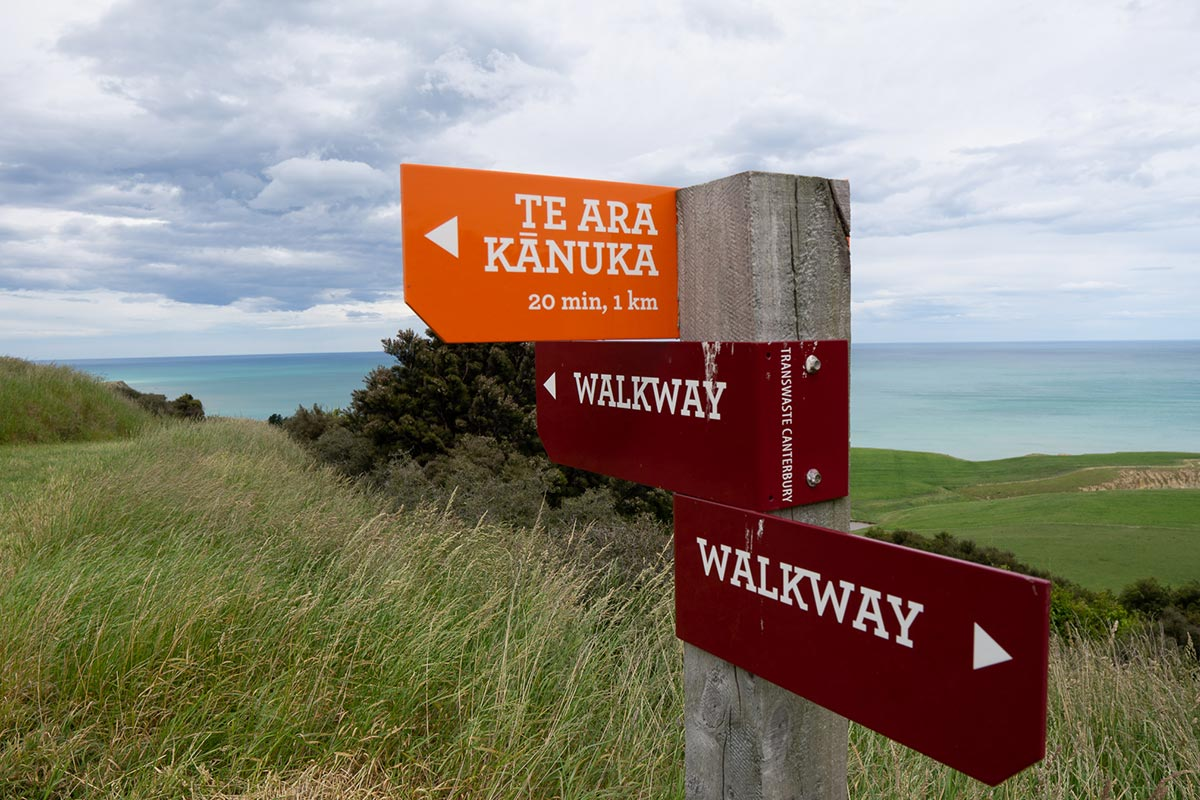 Tiromoana Bush Walk Signs